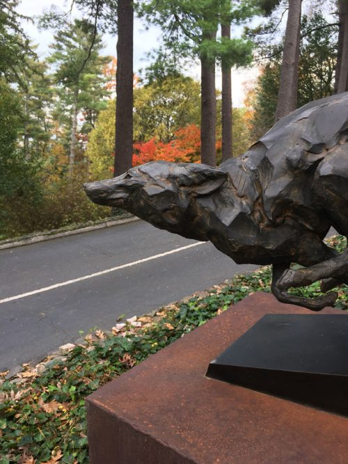 Limited edition bronze fox sculpture by Roger Martin.